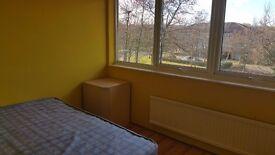 Single Room in Conniburrow