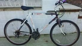 Mounting bike Adults