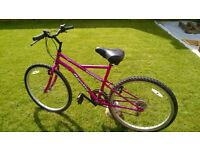 """Girls / Ladies Apollo Incessant Mountain Bike 18"""" Frame 26"""" Wheels."""