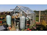 Aluminium Greenhouse 6Ft square including auto vent, plenty of washed plantpots & trays, Waterbarrel