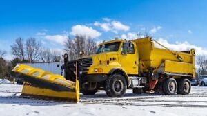 2007 STERLING LT9500 SNOW PLOW / PLOW TRUCK