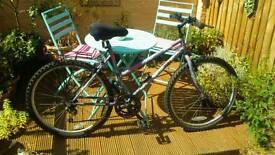 Woman's bike £35 o.n.o