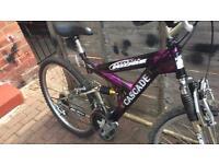 Lady mountain bike