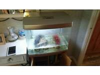 90 ltr aquarium and stand and accessories