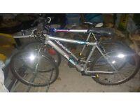 Raleigh Mustang Boys Bicycle