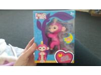 Pink Fingerling monkey with play gym