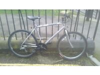 Raleigh Silver Blade Mountain Bike