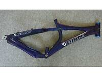 QUICK SALE WANTED - GIANT Acid II Frame & Bomber Suspension Forks - Custom Painted!!