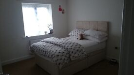 New Double room/quiet home in Didcot