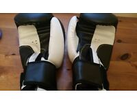 Max Strength Boxing Gloves (10 oz) in great condition