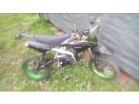 Pit bike 125cc collection only!