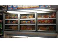 Commercial food freezer