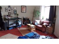 Double room in a bright sunny 3 bedroom HMO flat in Leith