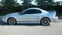 1999 mustang saftied e tested