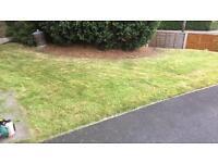 Cheap Garden and driveway maintenance