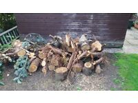 FREE LOGS/FIREWOOD - COLLECTION ONLY