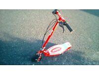 Razor E100 electric scooter.