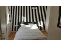 Double bedroom with suit for rent