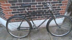 Vintage rod brake bike.phoenix model