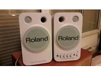 Roland Stereo Monitors Speakers