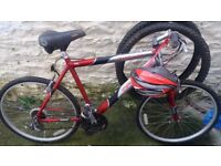mountain bike adults good condition just needs a clean comes with helmet off road and road tyres