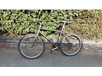 Bicycle for sale 17 inch frame