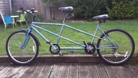12speed Tandem for sale **REDUCED**