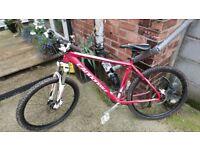Cannondale trail sl bike