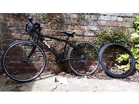 Frog 67 bike