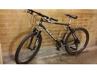 "Marin Bear Valley 19"" mountain bike"