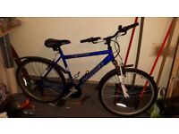 Blue Falcon mens bike