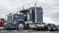 2010 Kenworth W900L HIGHWAY