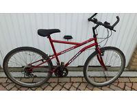Aplollo Perpetual bike. Fully working £25