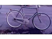 Large frame adults bike