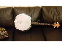 Gold Tone CC-Tenor: 4 String Banjo