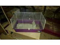 Indoor guinea pig or small rabbit cage