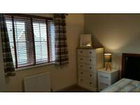 Room, double bed, storage, Wi-Fi, TV