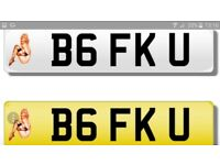 Private number plate B6 FKU