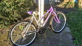Womens mountain bike £60
