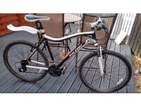 "Raleigh Chinook mountain bike 18"" 2010 model"