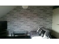 Painter Decorator Laminate Flooring Wallpapers Tiling DIY Great Prices Lot of experience