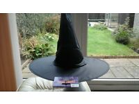 450+ Adult Witches hats