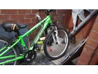 Bike kid procycle rapid 24