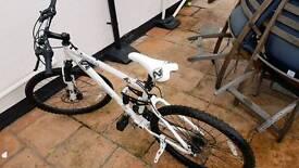 Spike Fugitive bike