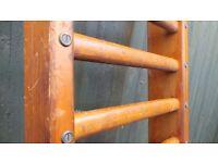 Beautiful Vintage Wooden School Gymnasium Pitch Pine Wall Ladder Towel Rail