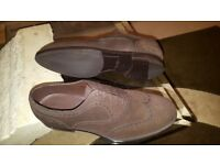 Bottega Veneta's brown lace up oxford shoes brand new. over £600 in the shops asking £300