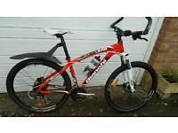 Bianchi Kuma Mountain bike