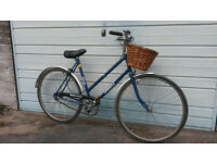 LADIES DUTCH STYLE TOWN BIKE WITH BASKET AND BELL £60