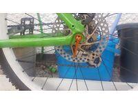 Saracen custom bike