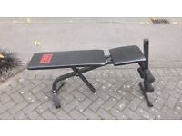 PRO POWER DUMBBELL WEIGHTS BENCH